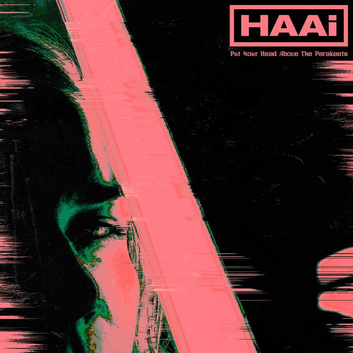 HAAi – Put Your Head Above The Parakeets